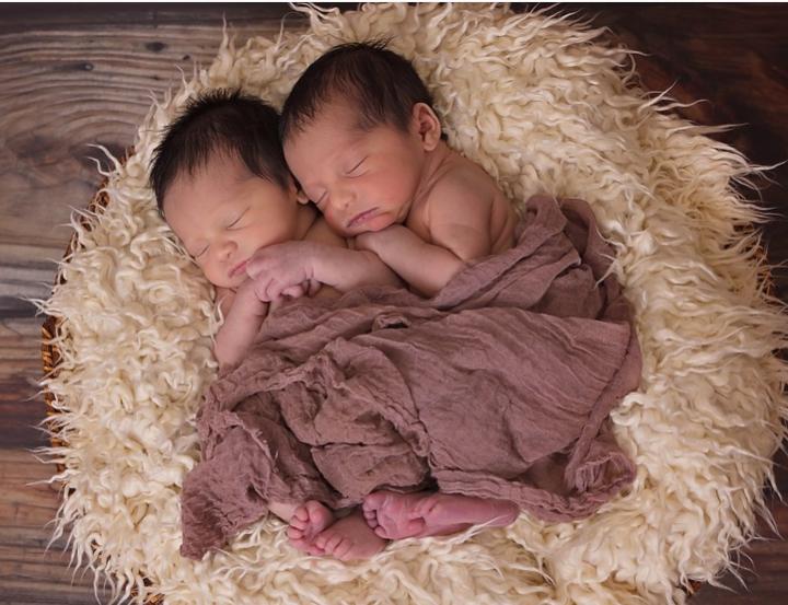 Двойная овуляция, в результате чего возникает многоплодная беременность