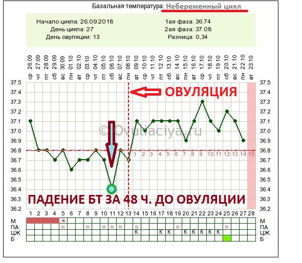 Как выглядит западение БТ за 48 часов до овуляции на графике базальной температуры