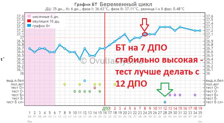 Базальная температура на 7 ДПО стабильно высокая - тест нужно делать с 12 ДПО