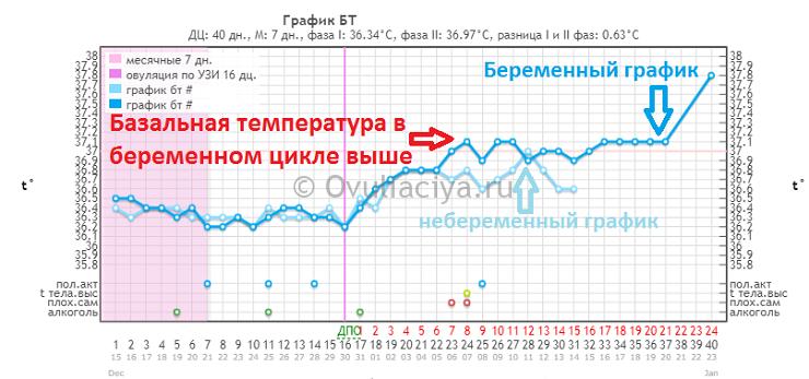 Определение беременности по базальной температуре. Признак 2 - средняя БТ выше в беременном цикле