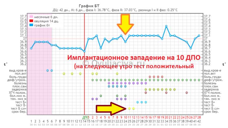 Определение имплантации по базальной температуре - показатель резко падает на один день