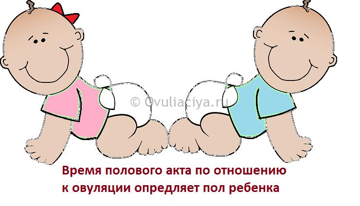 Открытый половой акт за 2-4 дня до овуляции родится девочка. за день и в день овуляции - будет мальчик