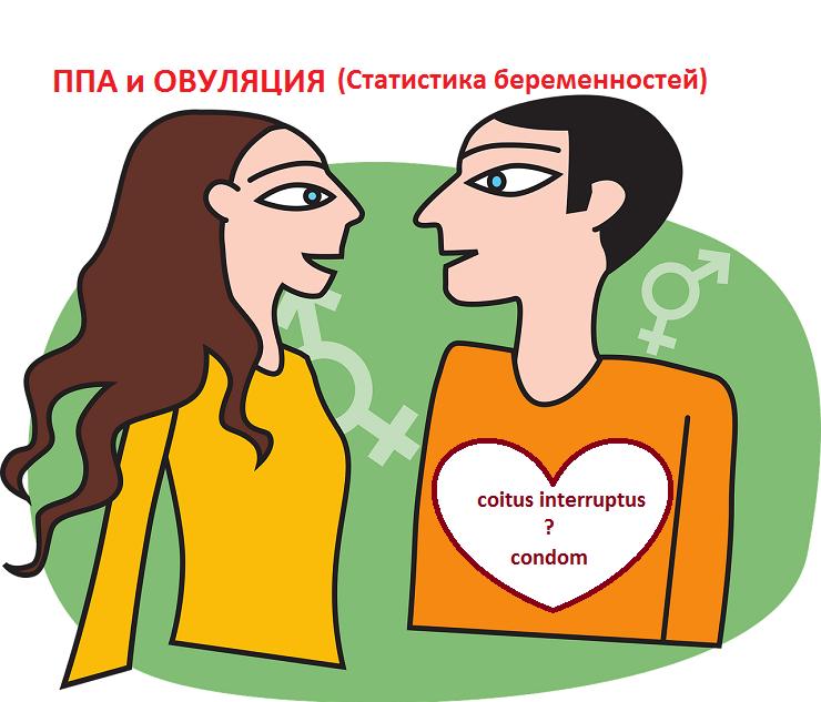 Незащищенный половой акт после овуляции